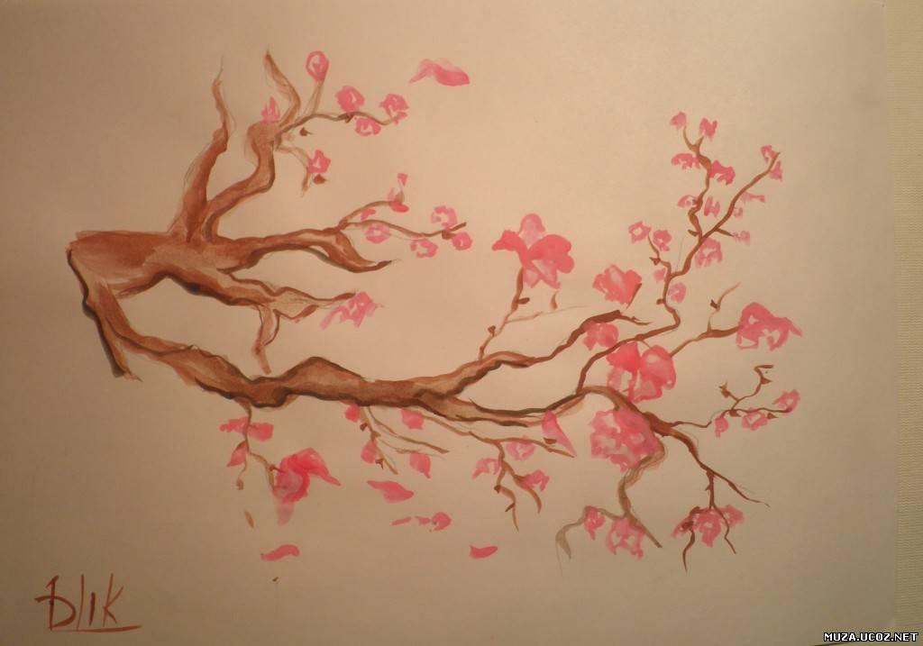 Как нарисовать сакуру на стене пошагово