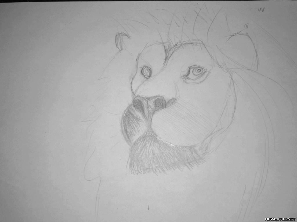 Рисуем все онлайн уроки карандашом